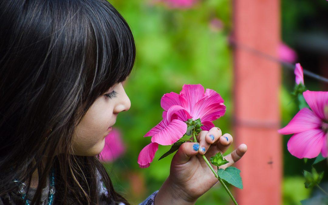 NIȽTU,O Child and Caregiver Safety and Nurturance Toolkit (2018-2020)