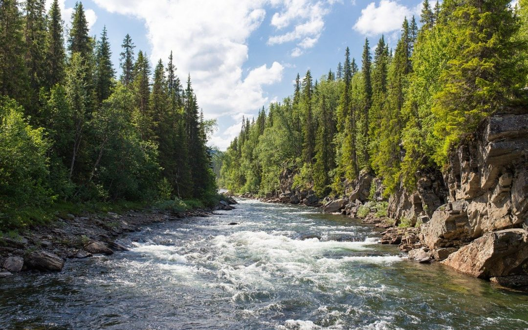 Water Laws: Lessons from Indigenous and Colonial Stewardship (2016-2020)